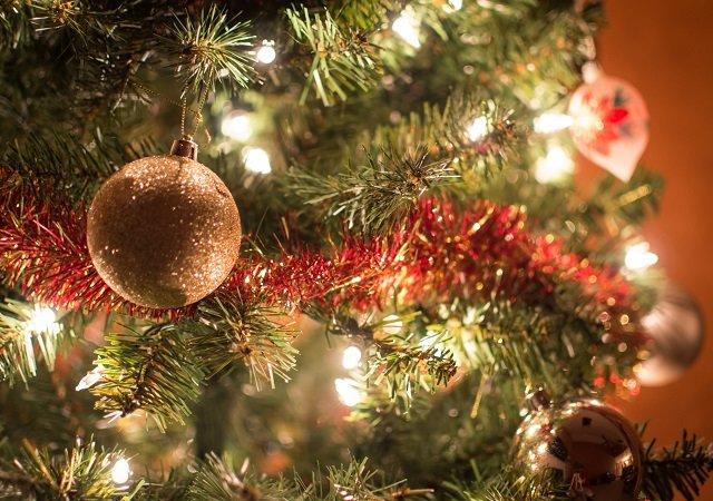 Kerstvakantie-tips voor het hele gezin