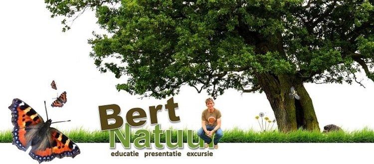 Buitengewoon Bert